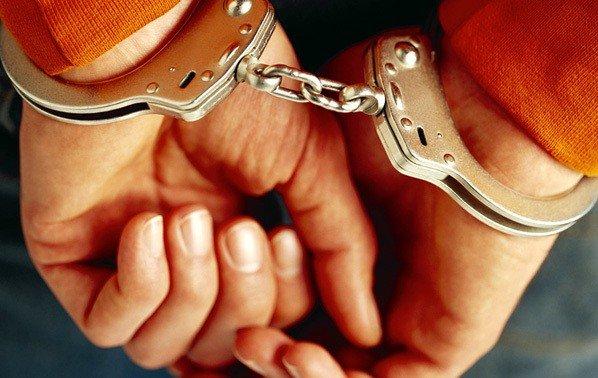 Міліція та громадськість викрили крадіжку на фермі під Полтавою