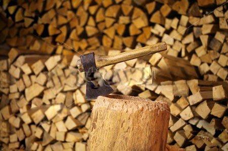 На Полтавщині зріс попит на дрова серед населення