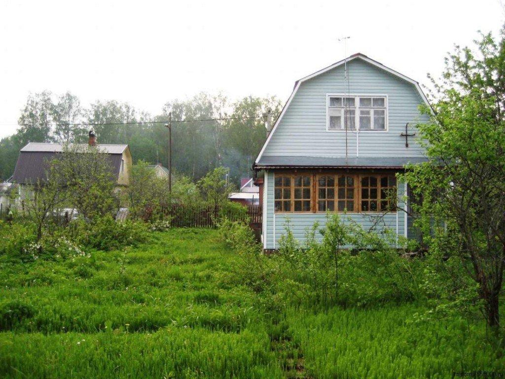 Дачні будинки можна перевести в житлові: інструкція