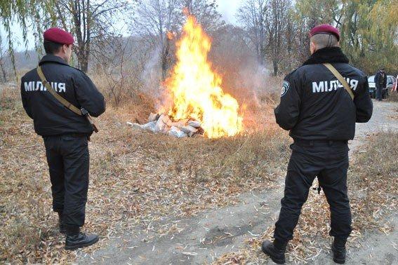 Полтавські міліціонери спалили наркотиків на 1,2 мільйона гривень