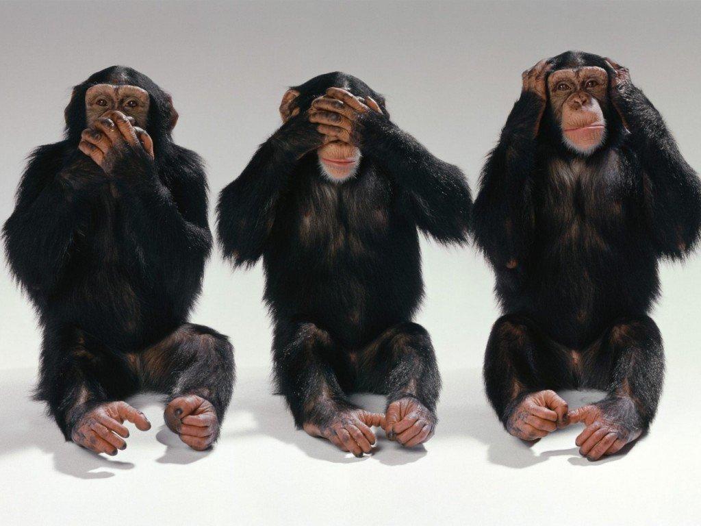 Суб'єктивно про прес-конференцію з приводу порушень на виборах
