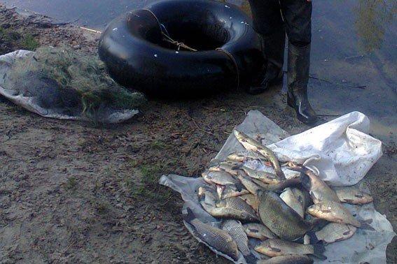 На Дніпродзержинському водосховищі браконьєр виловив 27 кілограмів риби