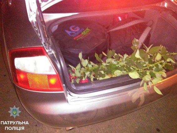 У Корпусному парку двоє полтавців на «Audi A4» зрізали 60 троянд