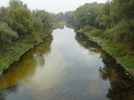 Через негоду у лубнах зійшла вода зі ставків: люди у полях збирали рибу