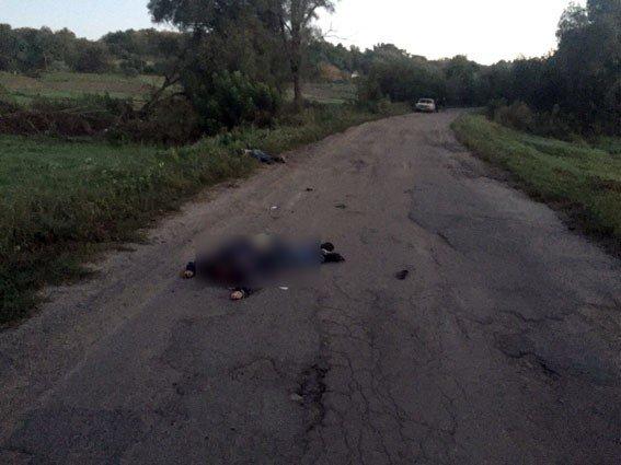На Полтавщині на смерть збили трьох пішоходів
