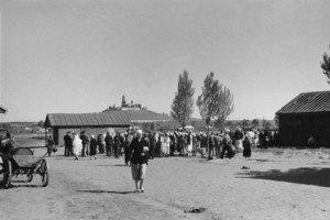 Аудіослайдшоу. Дню міста присвячується: Полтава 1943 (Продовження)