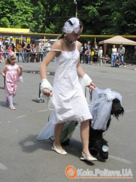 Парадів собак у Полтаві ще не було. А от конкурси костюмів у рамках виставок уже відбувались. Фото Ніни Король