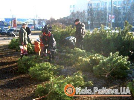 Фото kolo.poltava.ua