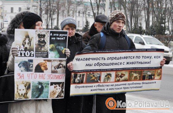 Фото з нещодавнього мітингу правозахисників тварин