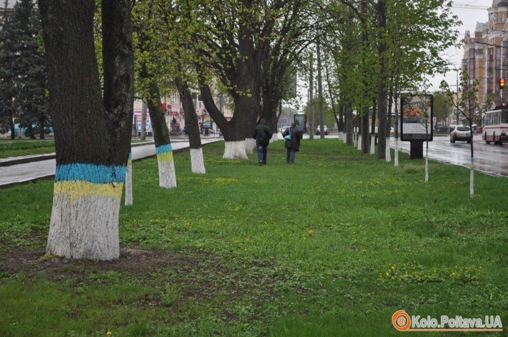 У Полтаві створили алею жовто блакитних дерев