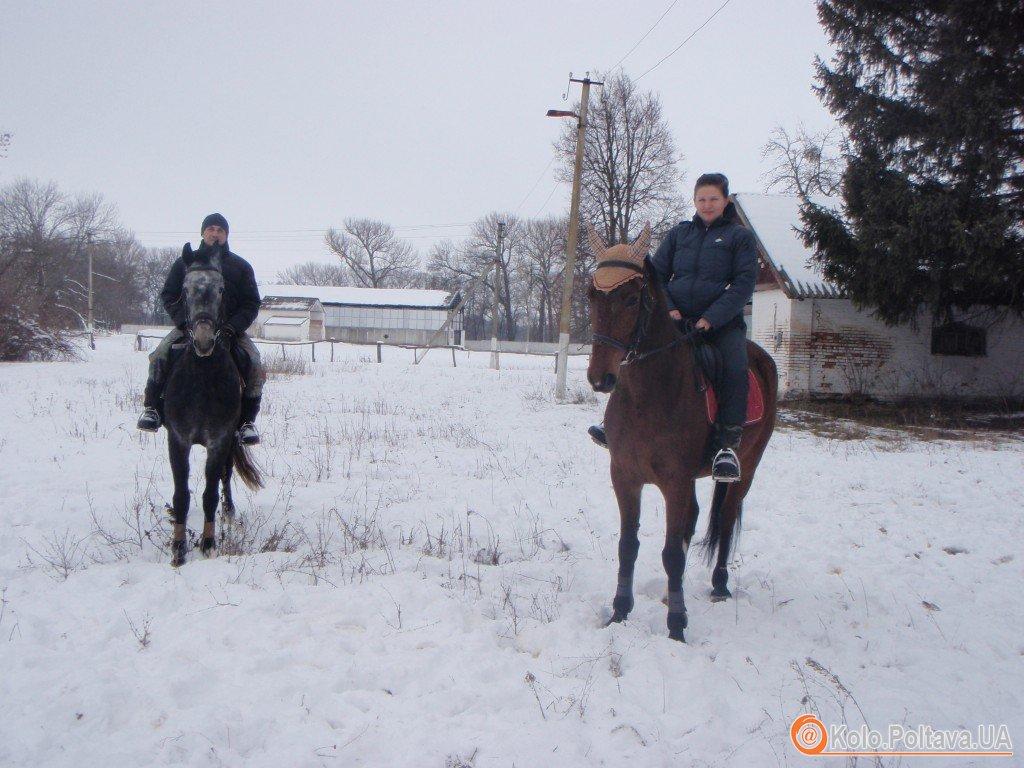 Родина переселенців із Донеччини евакуювала на Полтавщину цілу кінноспортивну школу