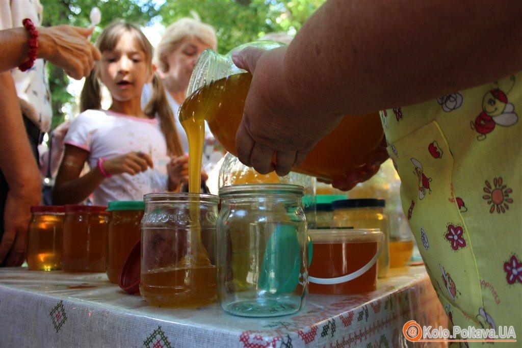 Не все спокійно в бджолиному королівстві пасічники розповіли, чому меншає меду