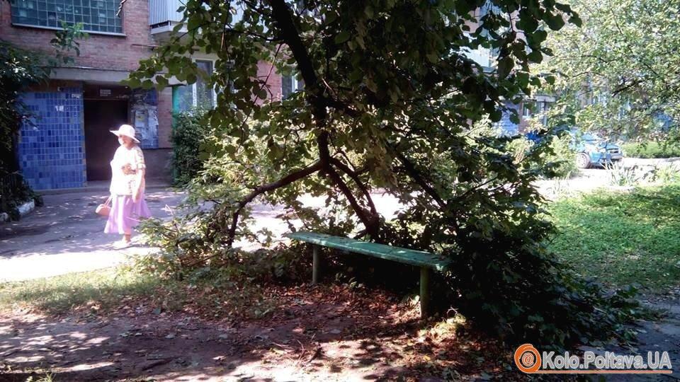 Негода у Полтаві повалені паркани, зірвані дахи, залиті вулиці