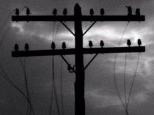 Фото: Через вітер в деяких селах Полтавщини зникла електроенергія